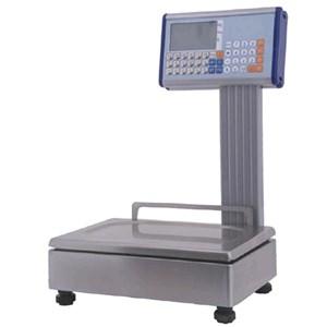 BILANCIA ELETTRONICA DA BANCO - MOD. Eb2/LN - REALIZZATA IN ACCIAIO INOX - PORTATA: Kg 12/30 div. 2/5 grammi - DIMENSIONE CM L 35 X P 37 X h 56 - NORMA CE